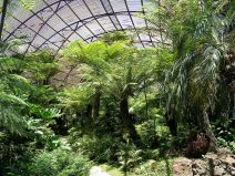 Rippon Lea glasshouse - interior