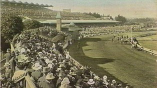 flemington_postcard