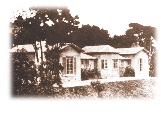 woodlands_homestead_early
