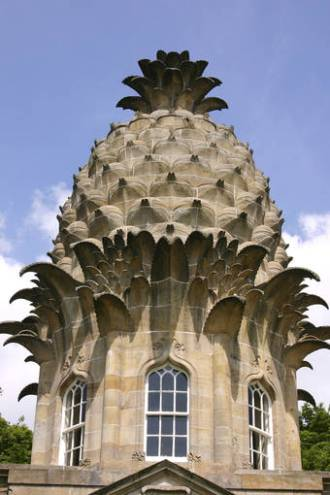 Pineapple-building-0218_74030d75633b733c59b6042fd3133195